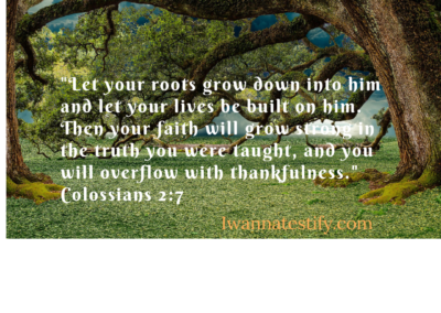 And now, just as you received Christ Jesus as your Lord, you must continue to follow him. Let your roots grow down into him and let your lives be built on him. Then
